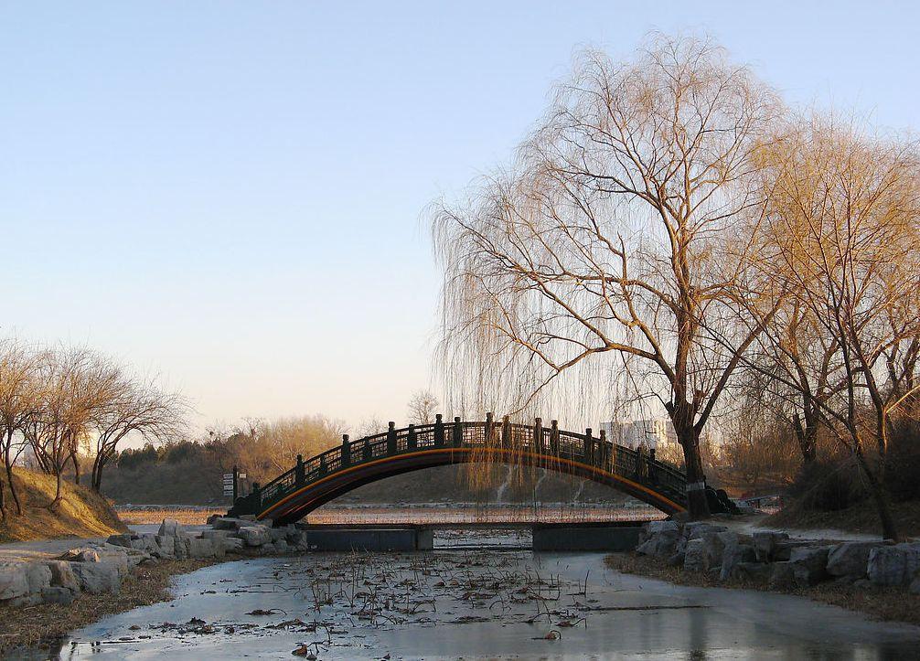 頤和園の画像 p1_23